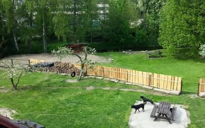 petaks-sekani-zahrad-feature